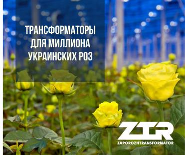 Трансформаторы для миллиона украинских роз